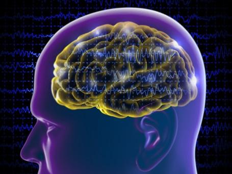 dt_150805_brain_seizure_stroke_epilepsy_800x600